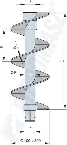 ślimak przedłużający